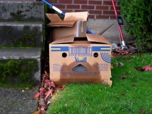 Beardy Cardboard Man