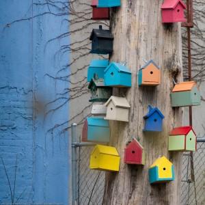Bird Houses / SML.20071230.10D.46705