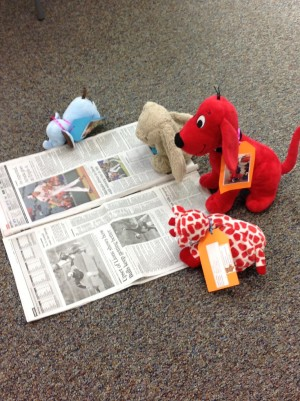 Pikesville Branch - Stuffed Animal Story Time Sleepover