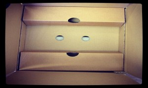 Happy cardboard box face