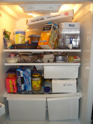 Refrigerator Dare - For Belinda